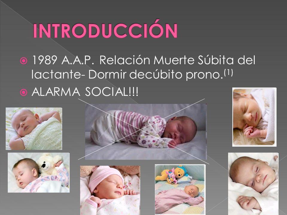 INTRODUCCIÓN 1989 A.A.P.