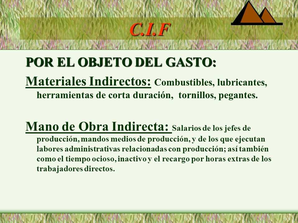 C.I.F POR EL OBJETO DEL GASTO: