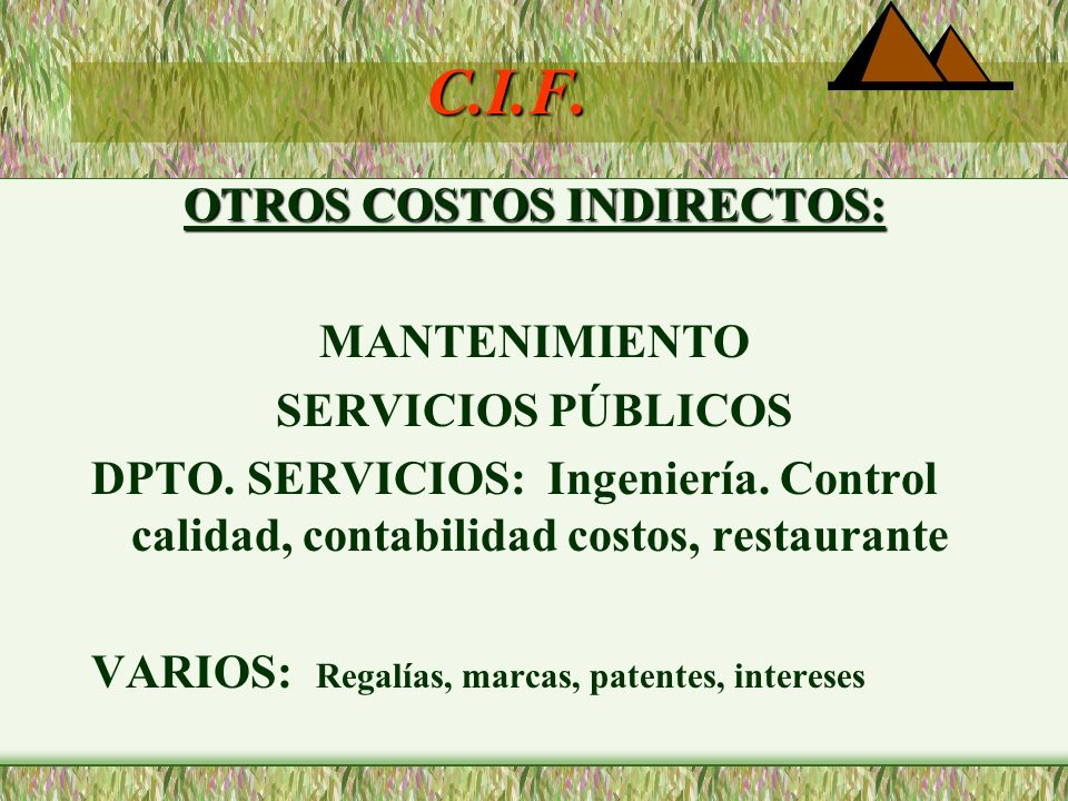 OTROS COSTOS INDIRECTOS: