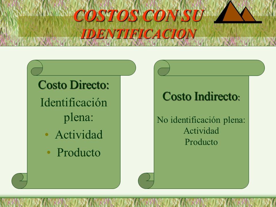 COSTOS CON SU IDENTIFICACION