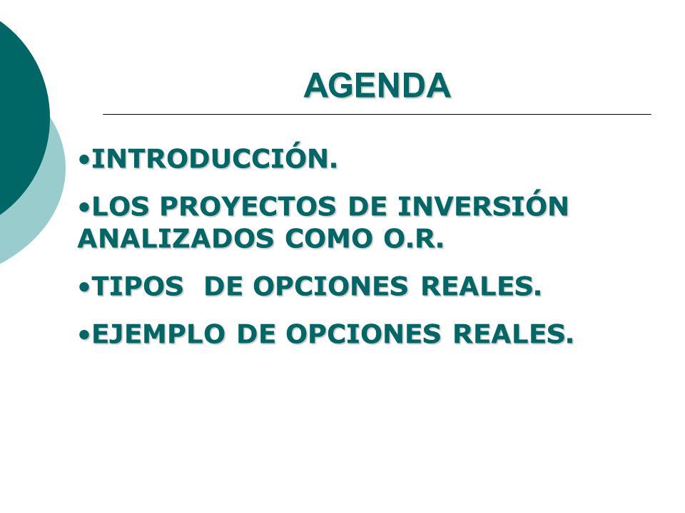 AGENDA INTRODUCCIÓN. LOS PROYECTOS DE INVERSIÓN ANALIZADOS COMO O.R.