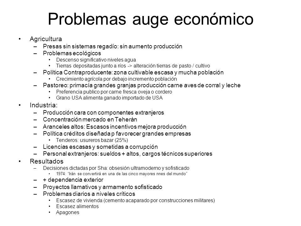 Problemas auge económico
