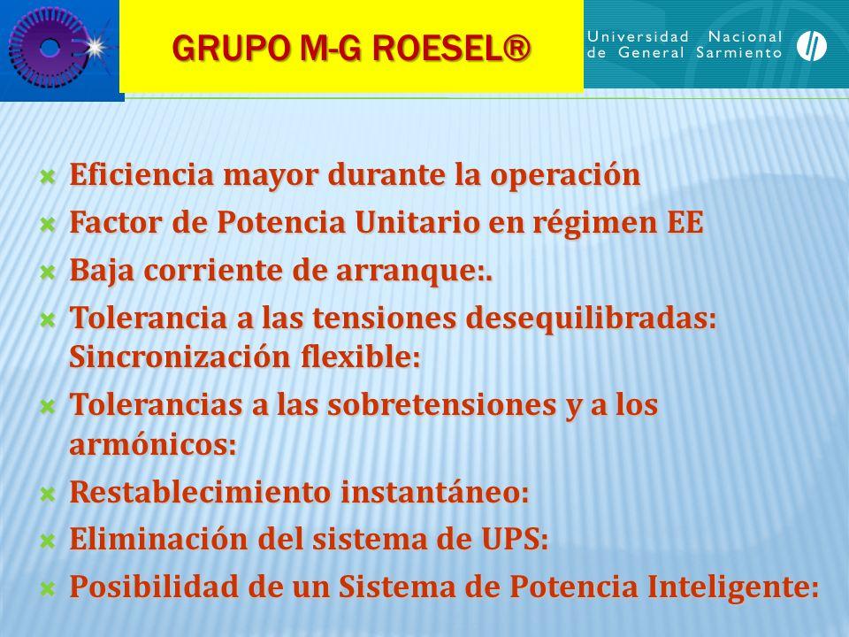 GRUPO M-G ROESEL® Eficiencia mayor durante la operación