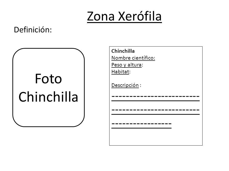 Zona Xerófila Definición: