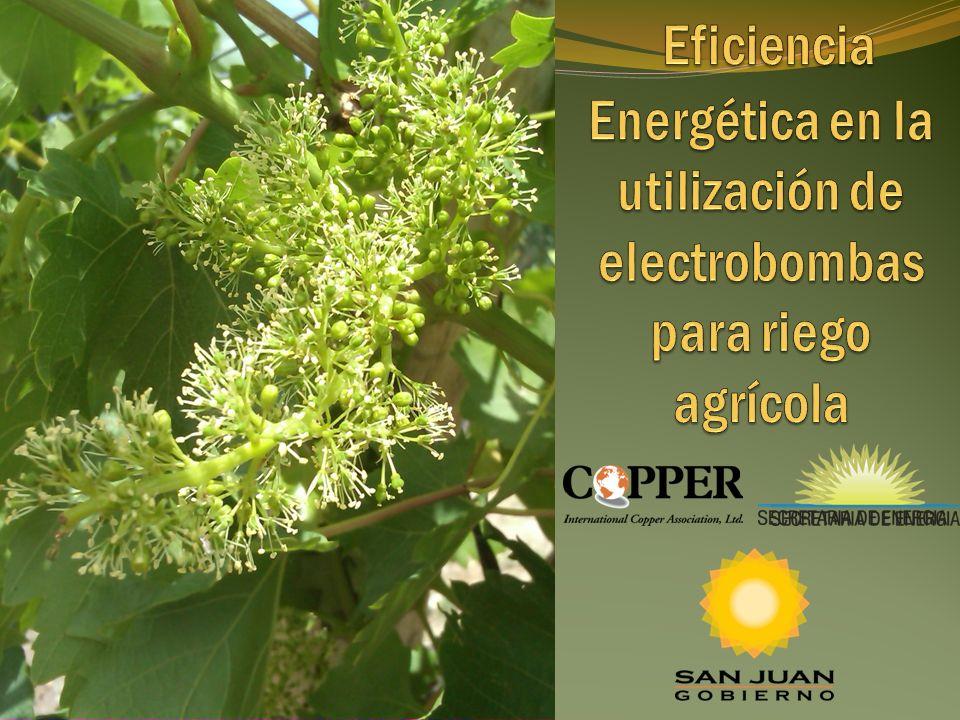 Eficiencia Energética en la utilización de electrobombas para riego agrícola