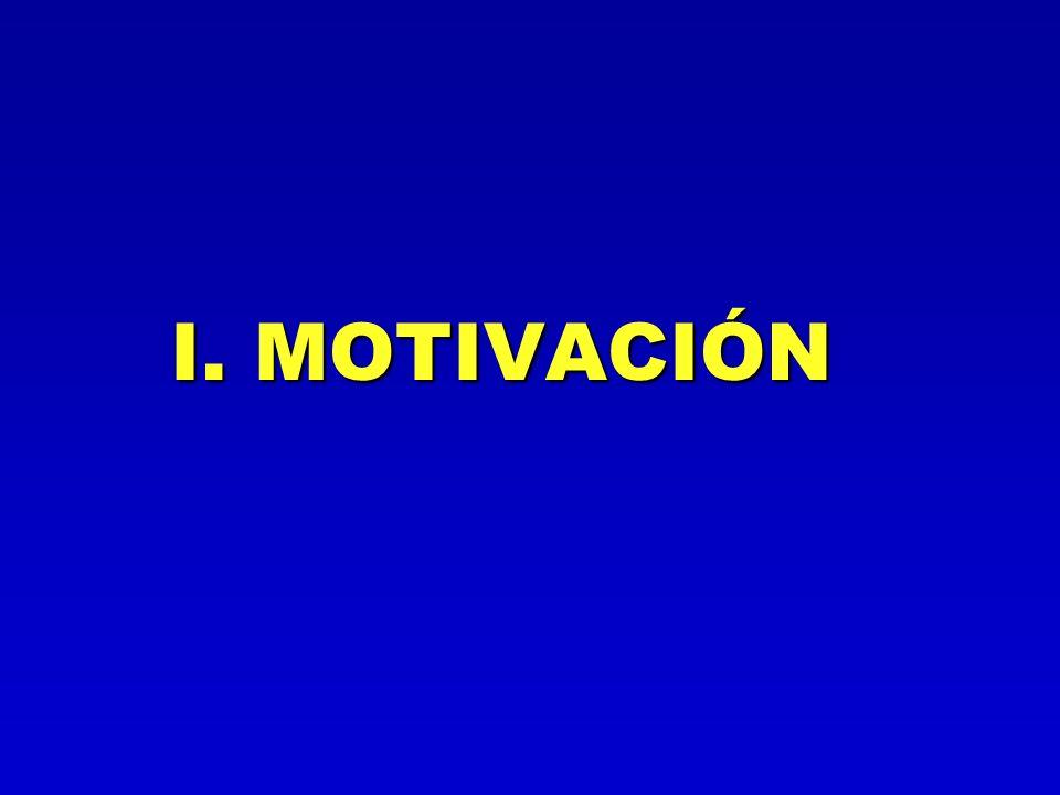 I. MOTIVACIÓN