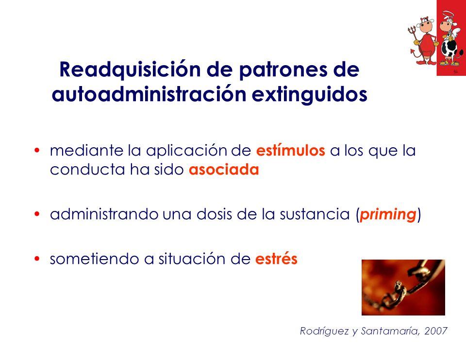 Readquisición de patrones de autoadministración extinguidos