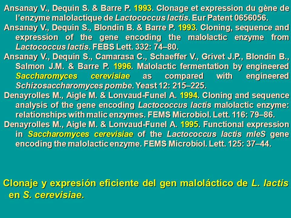 Ansanay V. , Dequin S. & Barre P. 1993