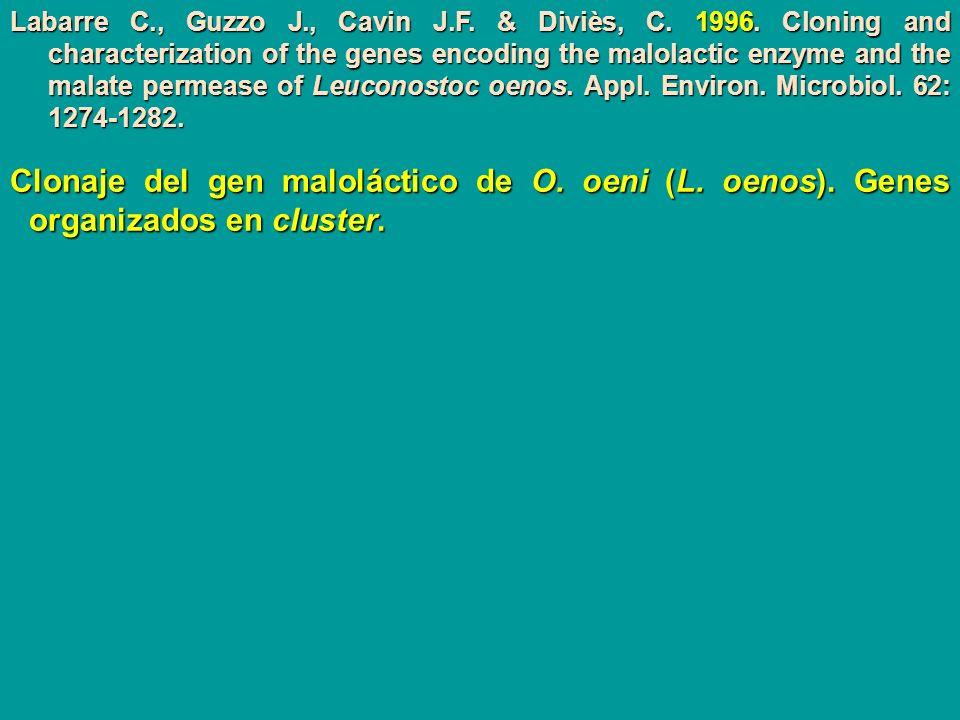 Labarre C. , Guzzo J. , Cavin J. F. & Diviès, C. 1996