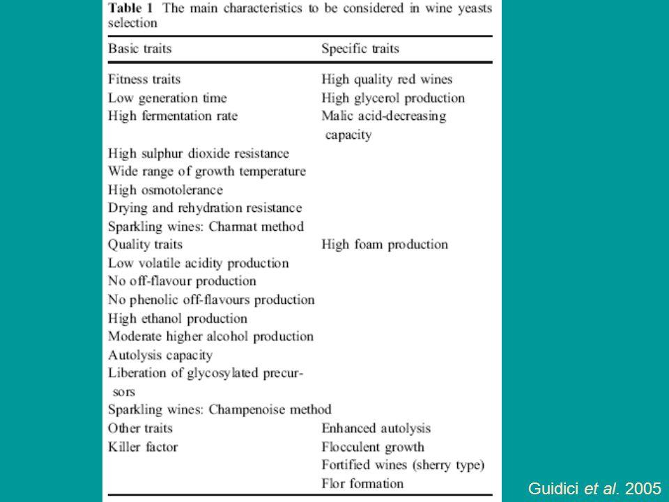 Guidici et al. 2005