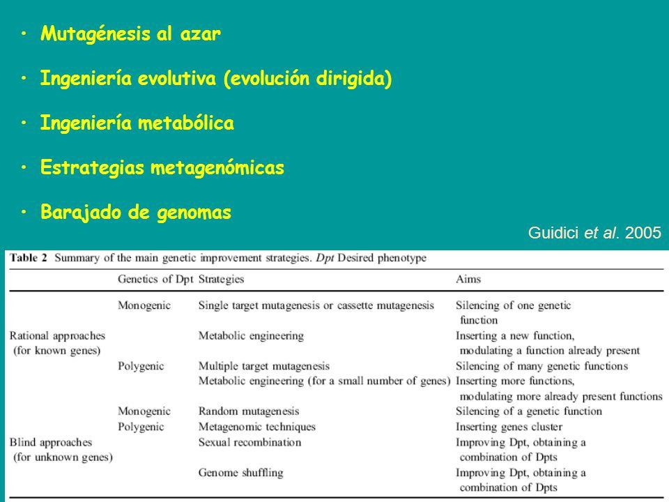 Ingeniería evolutiva (evolución dirigida) Ingeniería metabólica