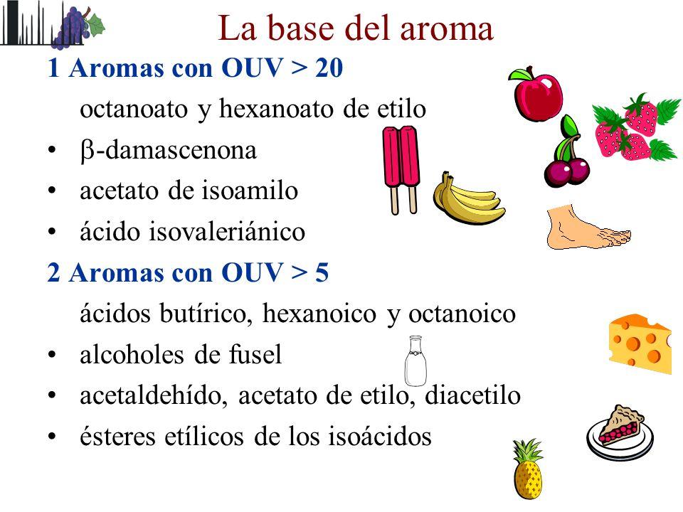 La base del aroma 1 Aromas con OUV > 20