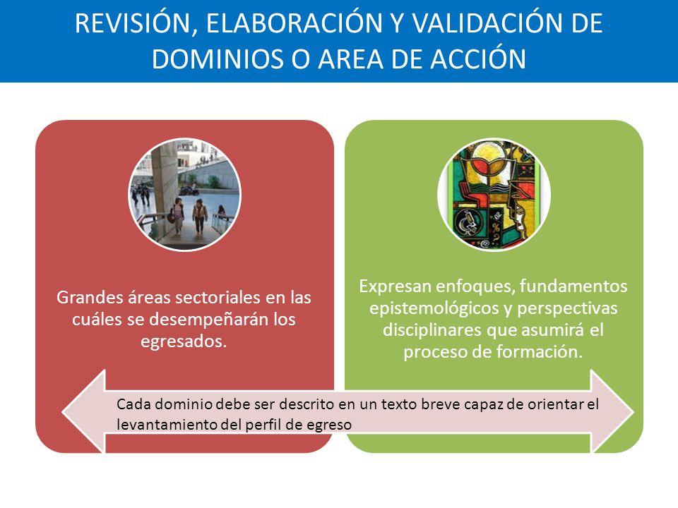 REVISIÓN, ELABORACIÓN Y VALIDACIÓN DE DOMINIOS O AREA DE ACCIÓN