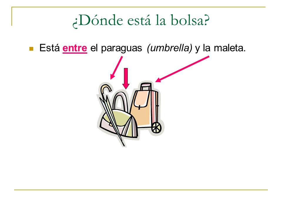 ¿Dónde está la bolsa Está entre el paraguas (umbrella) y la maleta.