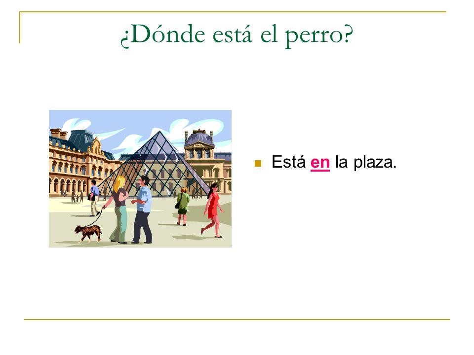 ¿Dónde está el perro Está en la plaza.
