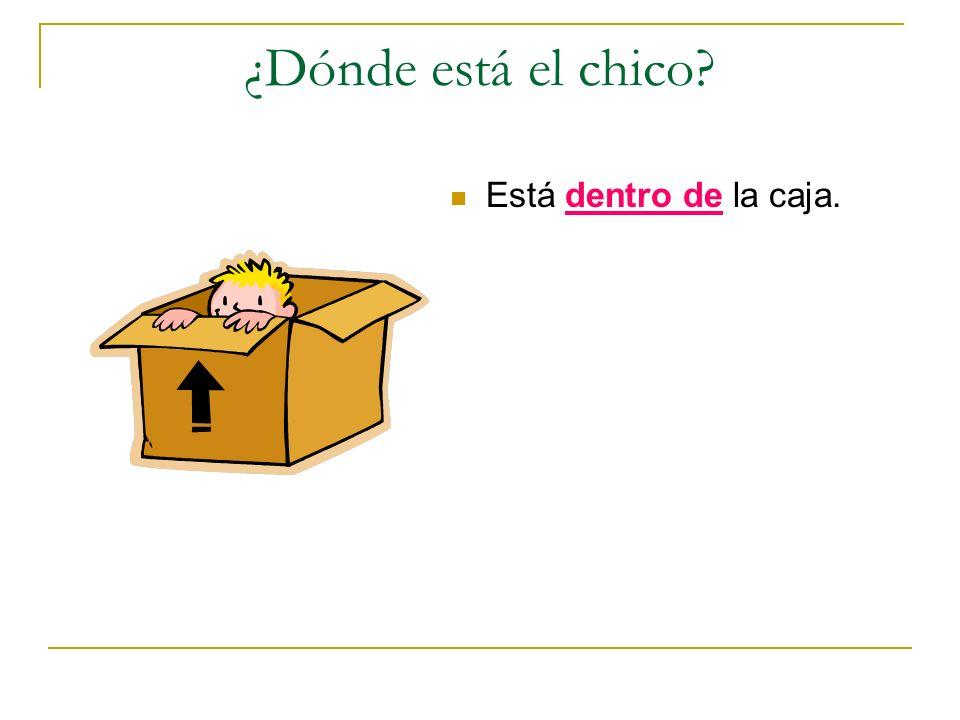 ¿Dónde está el chico Está dentro de la caja.