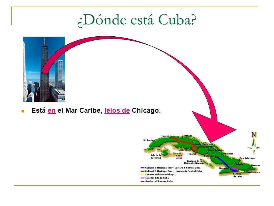 ¿Dónde está Cuba Está en el Mar Caribe, lejos de Chicago.