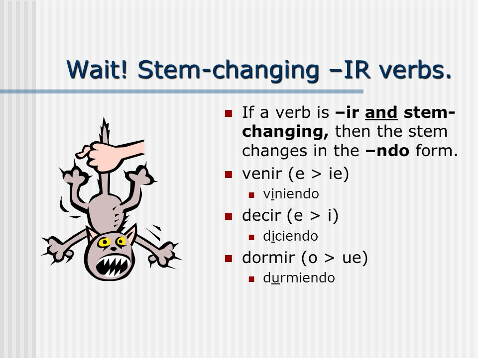 Wait! Stem-changing –IR verbs.