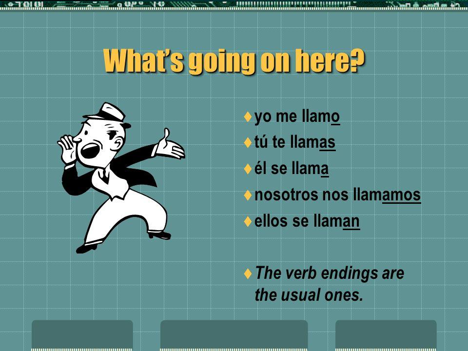 What's going on here yo me llamo tú te llamas él se llama