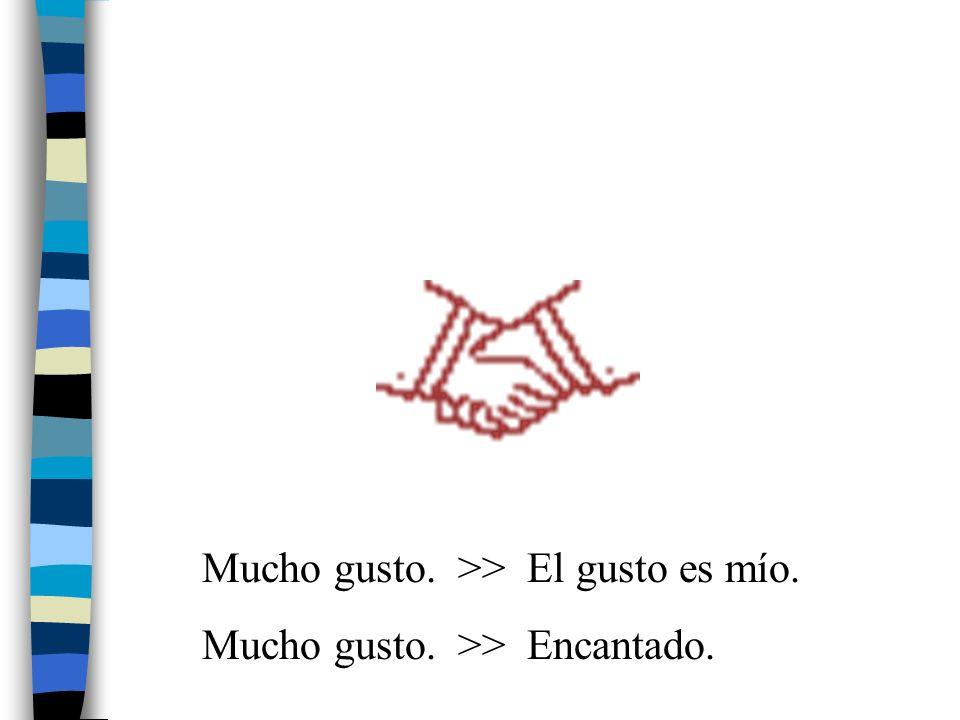 Mucho gusto. >> El gusto es mío.