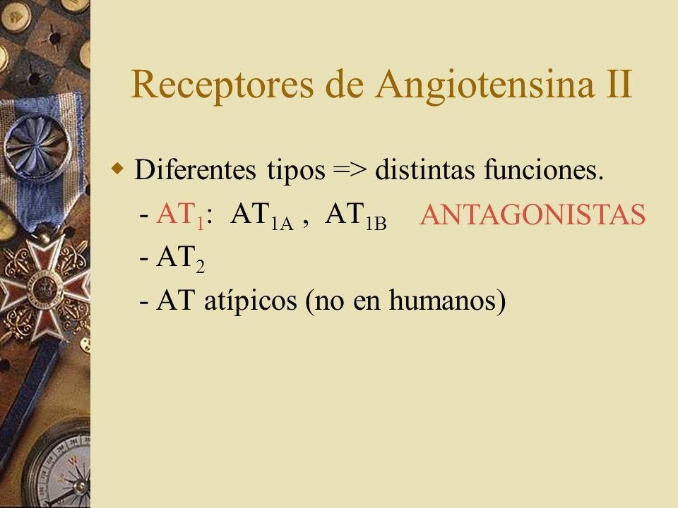 Receptores de Angiotensina II