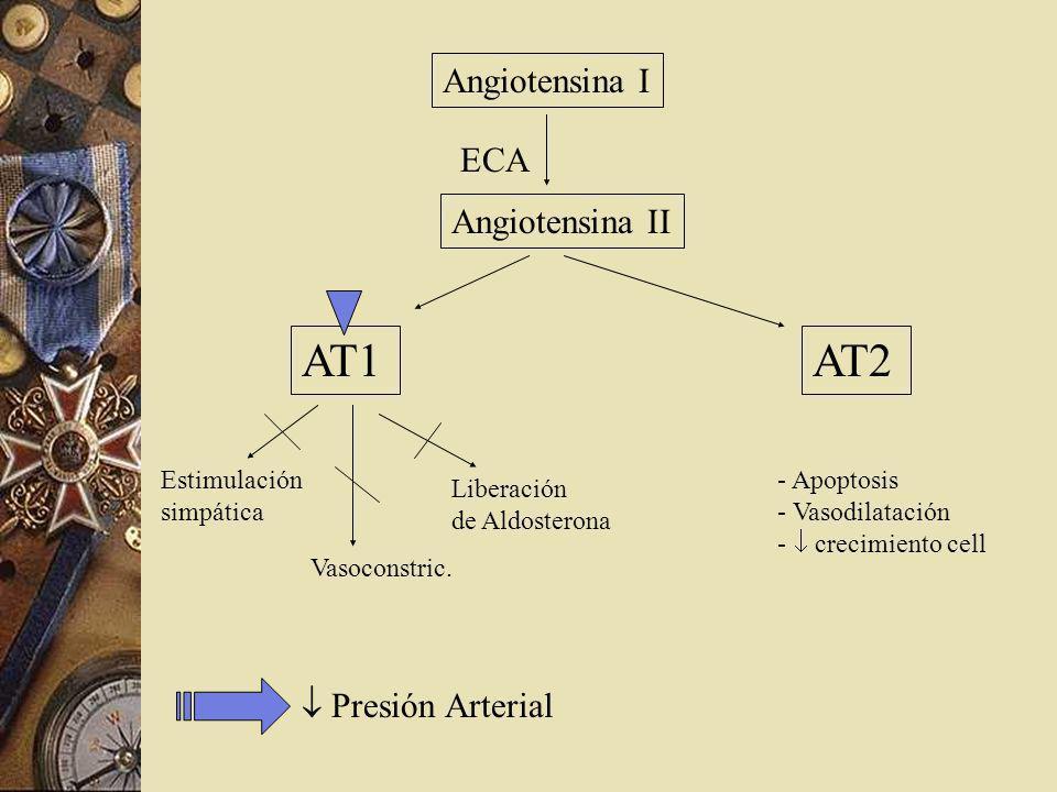 AT1 AT2 Angiotensina I ECA Angiotensina II  Presión Arterial