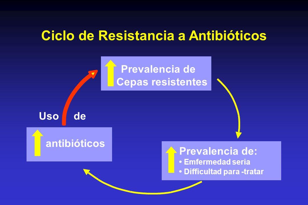 Ciclo de Resistancia a Antibióticos