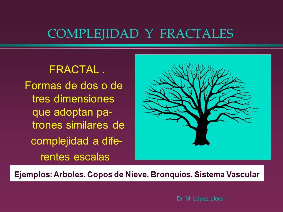 COMPLEJIDAD Y FRACTALES