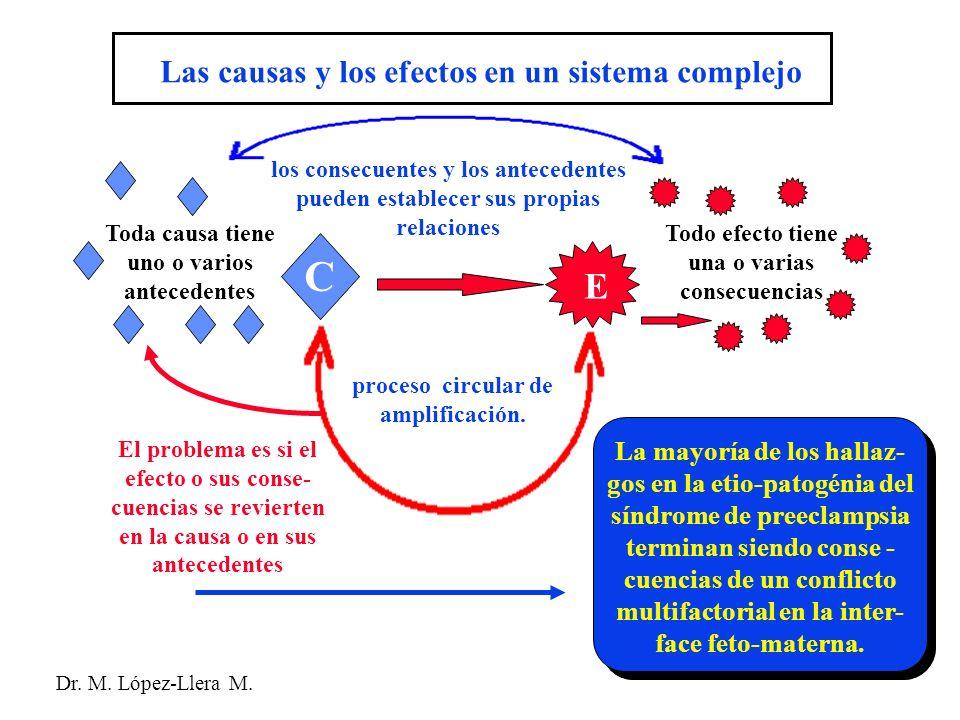 C E Las causas y los efectos en un sistema complejo