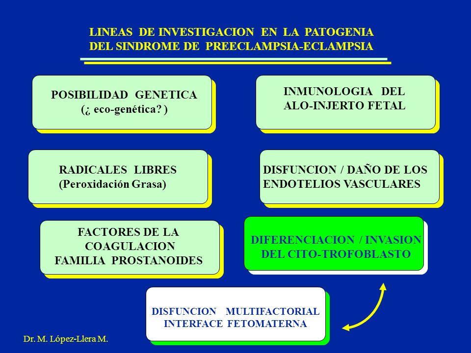 LINEAS DE INVESTIGACION EN LA PATOGENIA