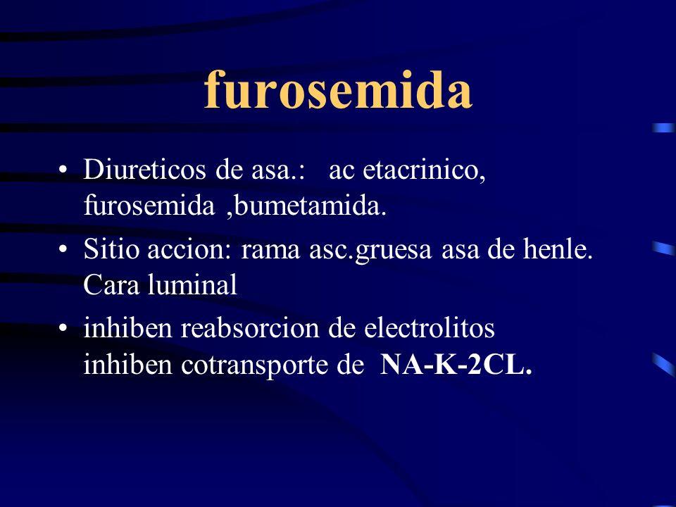 furosemida Diureticos de asa.: ac etacrinico, furosemida ,bumetamida.