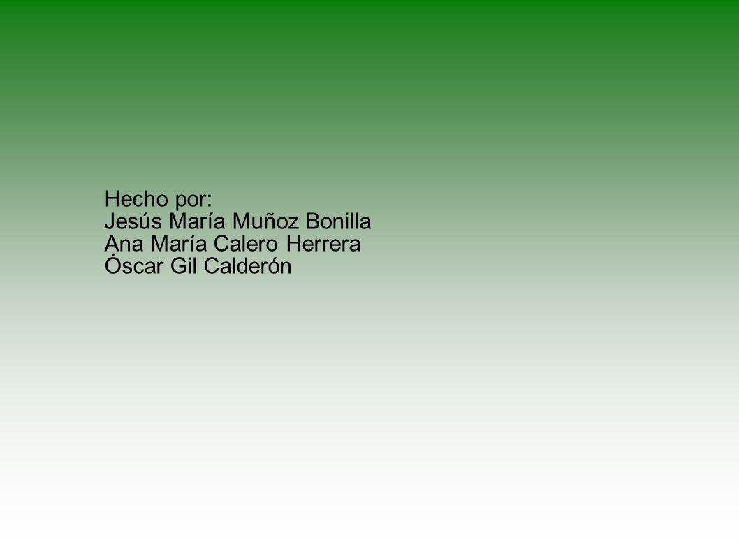Hecho por: Jesús María Muñoz Bonilla Ana María Calero Herrera Óscar Gil Calderón
