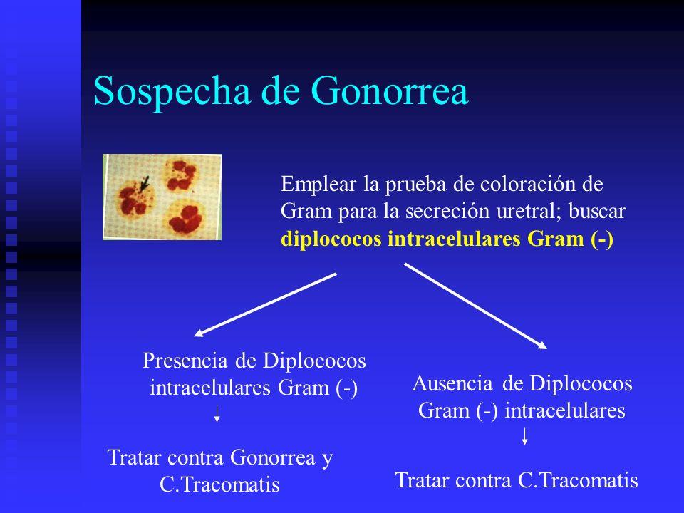 Sospecha de Gonorrea Emplear la prueba de coloración de Gram para la secreción uretral; buscar diplococos intracelulares Gram (-)