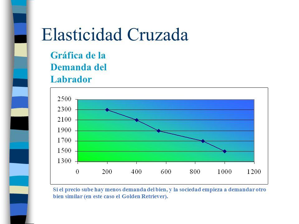 Elasticidad Cruzada Gráfica de la Demanda del Labrador