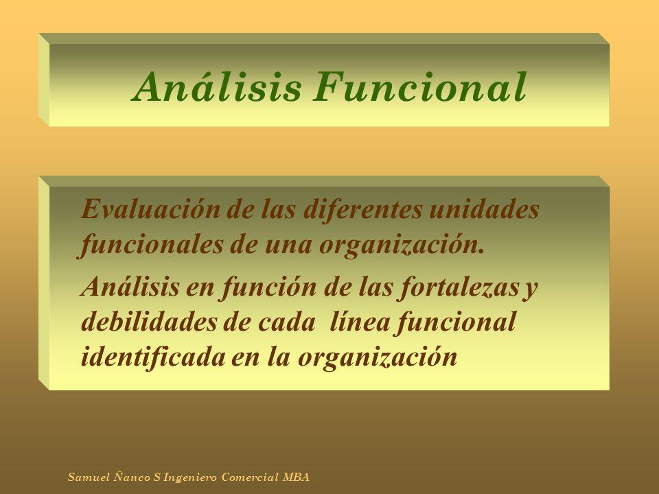 Análisis Funcional Evaluación de las diferentes unidades funcionales de una organización.