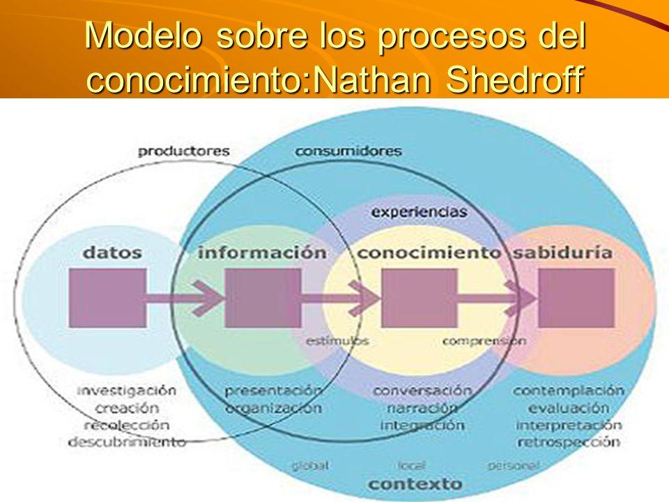 Modelo sobre los procesos del conocimiento:Nathan Shedroff