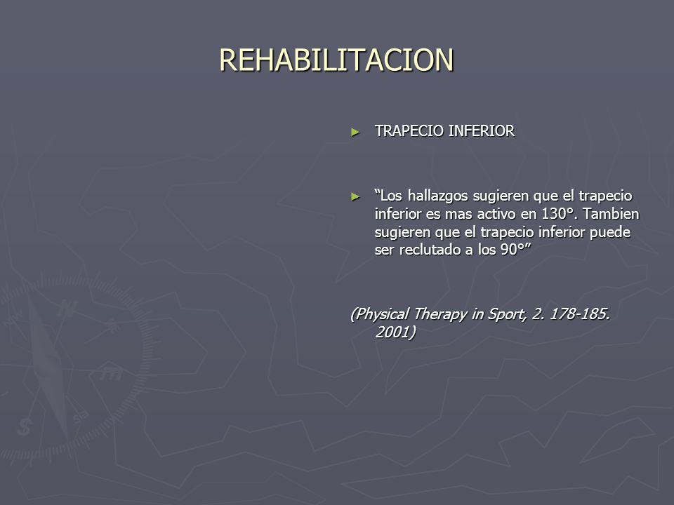 REHABILITACION TRAPECIO INFERIOR