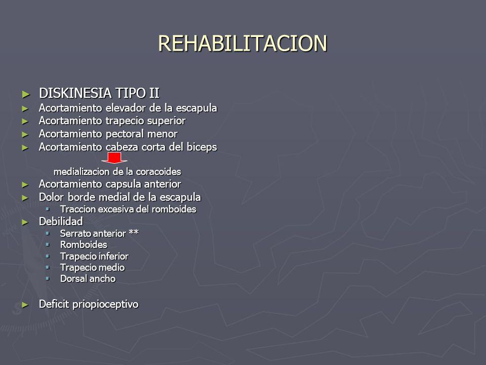 REHABILITACION DISKINESIA TIPO II Acortamiento elevador de la escapula