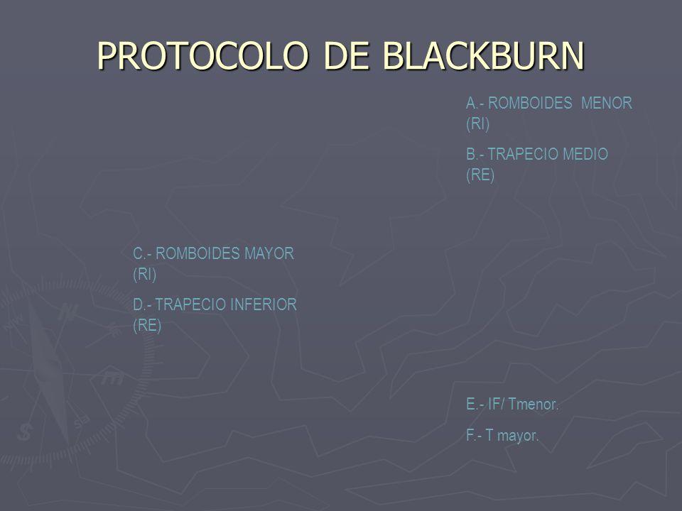 PROTOCOLO DE BLACKBURN
