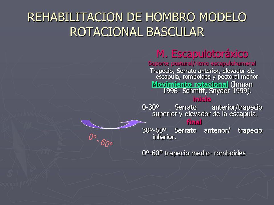 REHABILITACION DE HOMBRO MODELO ROTACIONAL BASCULAR