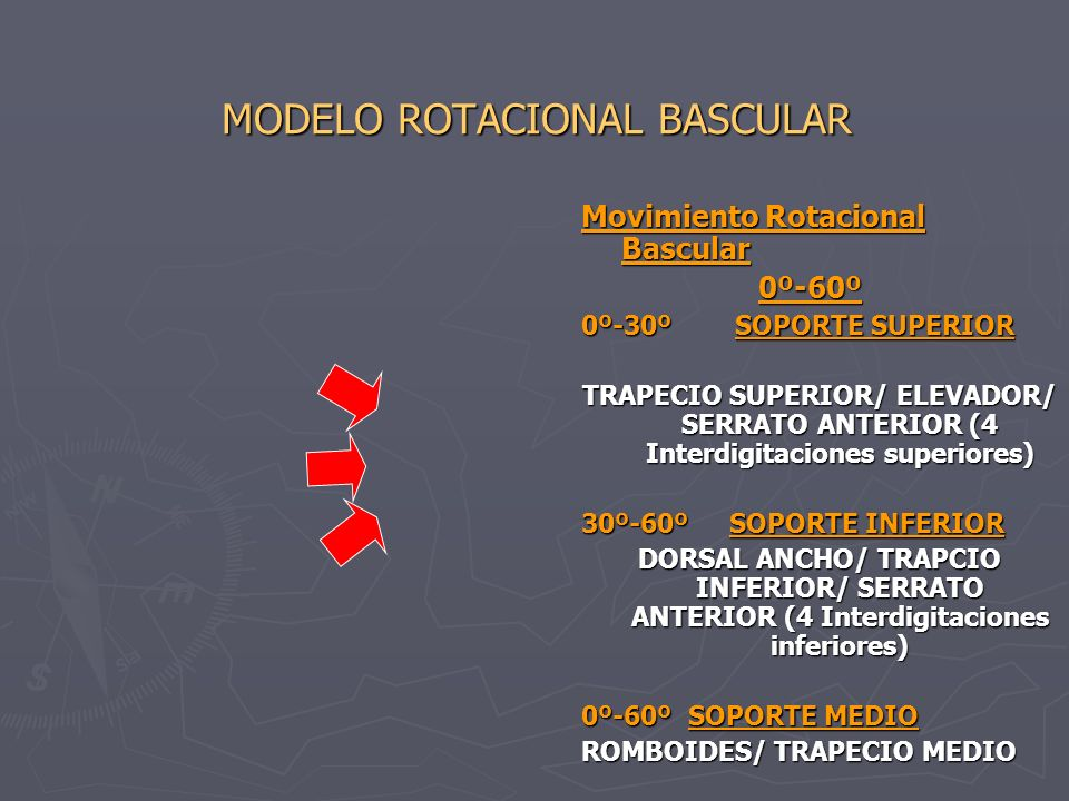MODELO ROTACIONAL BASCULAR