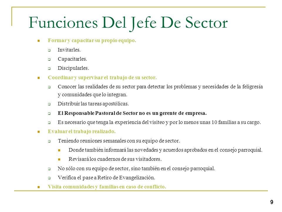 Funciones Del Jefe De Sector