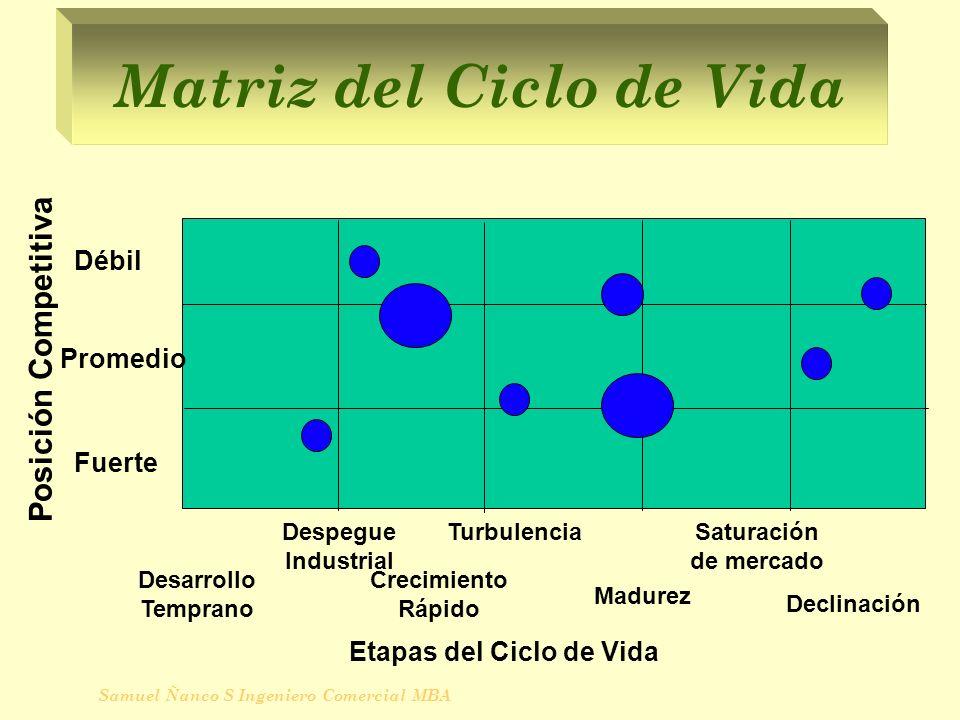Matriz del Ciclo de Vida