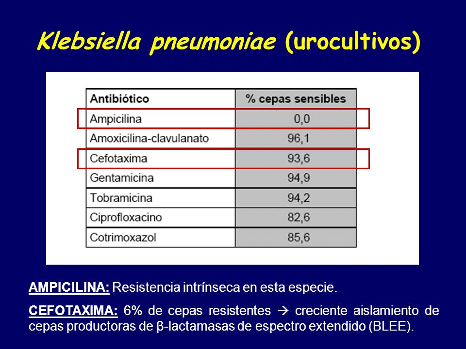 Klebsiella pneumoniae (urocultivos)