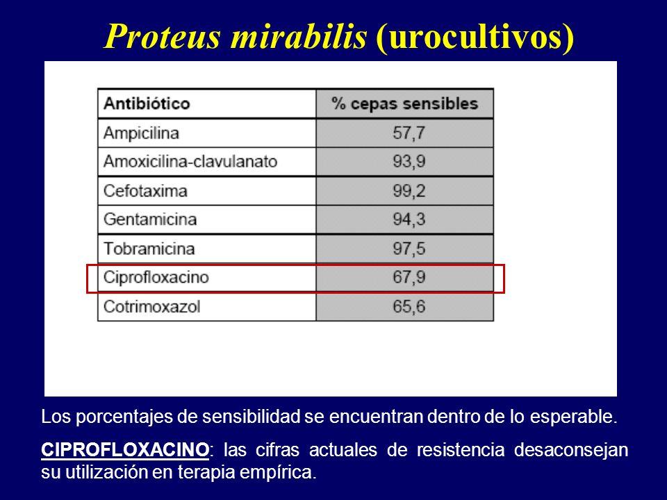 Proteus mirabilis (urocultivos)