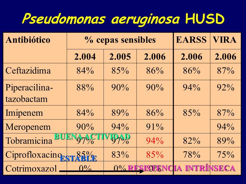 Pseudomonas aeruginosa HUSD