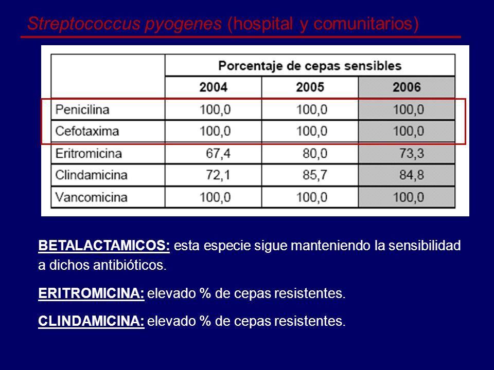 Streptococcus pyogenes (hospital y comunitarios)