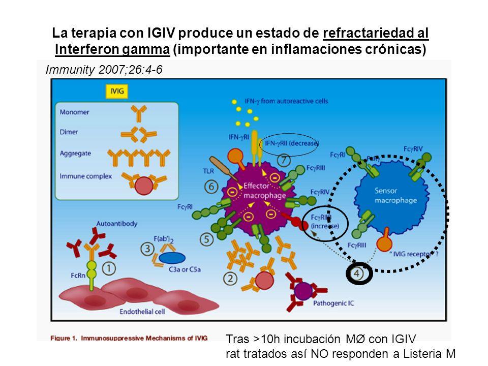 La terapia con IGIV produce un estado de refractariedad al Interferon gamma (importante en inflamaciones crónicas)