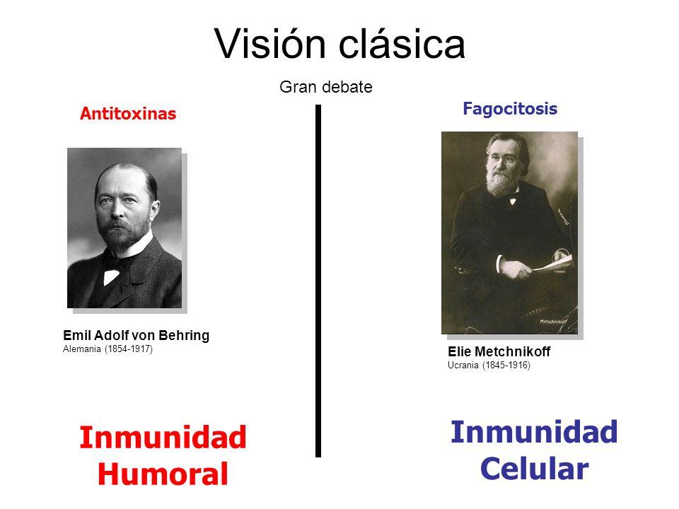 Visión clásica Inmunidad Celular Inmunidad Humoral Gran debate