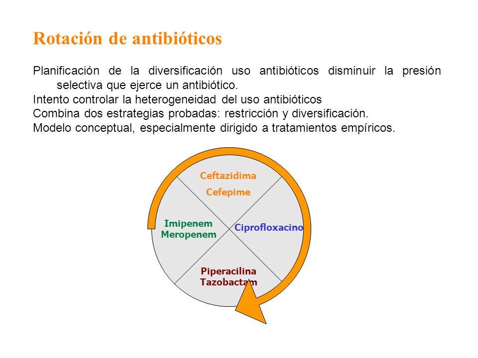 PiperacilinaTazobactam